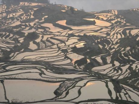 China - Yuanyang Rice Terraces