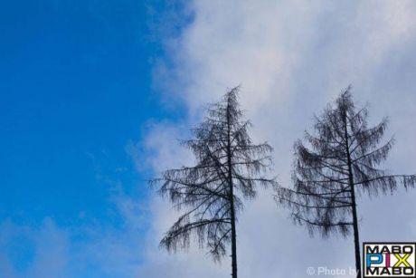 fantastic atmosphere onder the sun of east switzerland
