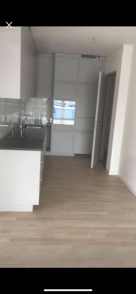 Nachmieter Gesucht Für Eine 35 Zimmer Wohnung In Wallisellen Ab 0